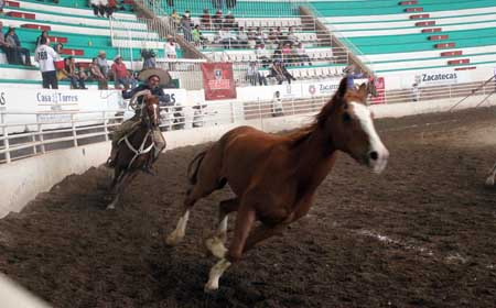 Charreadas De Zacatecas http://ntrzacatecas.com/2011/10/14/gana-universidad-de-durango-la-charreada-universitaria/